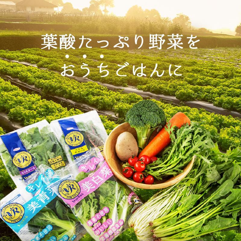 野菜 詰め合わせ セット オーガニック 5種類以上 有機野菜 送料無料 お試し ベジリッチ マタニティ 葉酸 お試し ベジリッチ 美白菜 美青菜|sweet-mommy