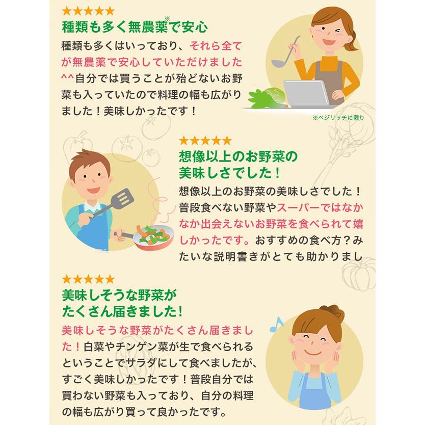 野菜 詰め合わせ セット オーガニック 5種類以上 有機野菜 送料無料 お試し ベジリッチ マタニティ 葉酸 お試し ベジリッチ 美白菜 美青菜|sweet-mommy|05