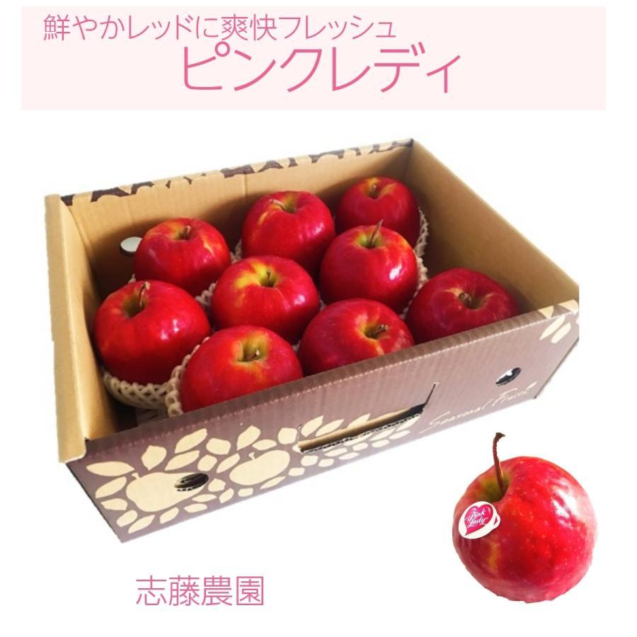 【志藤農園】りんご ピンクレディ 2kg(8〜12玉) sweetjuicyparadise