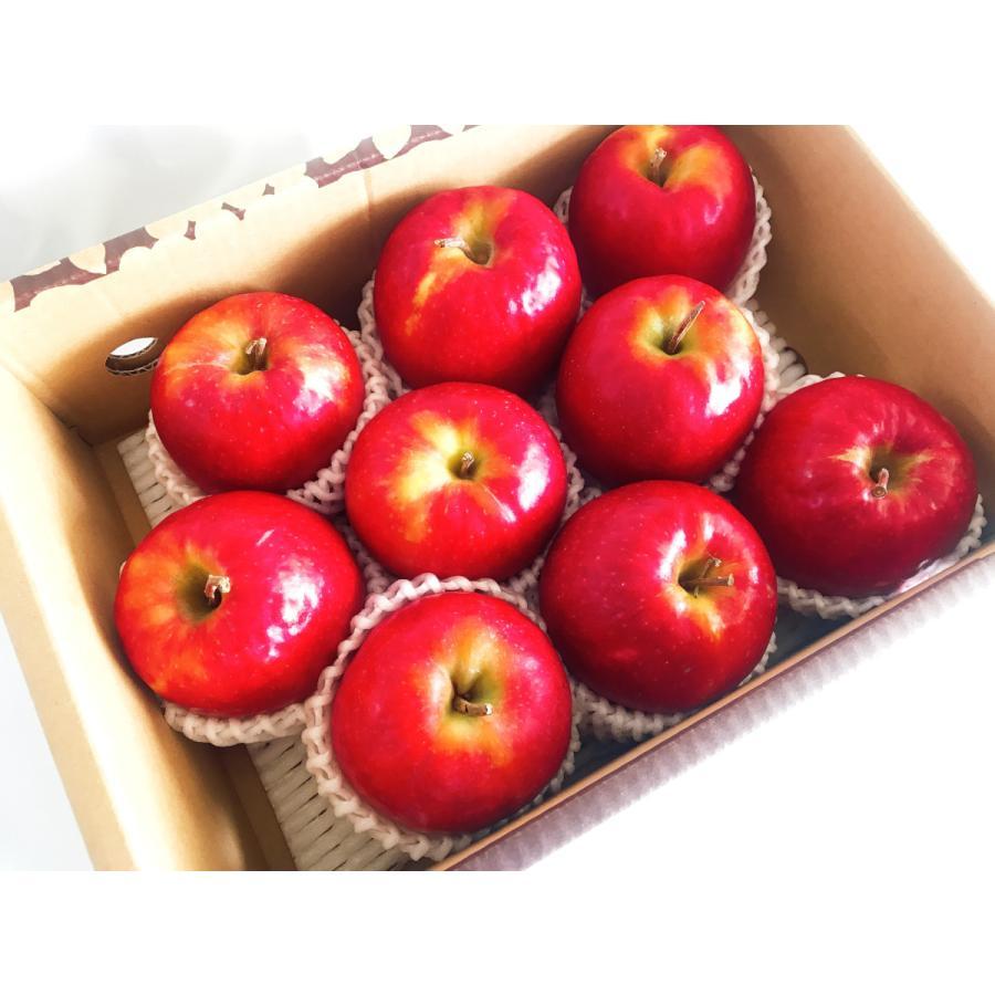 【志藤農園】りんご ピンクレディ 2kg(8〜12玉) sweetjuicyparadise 02