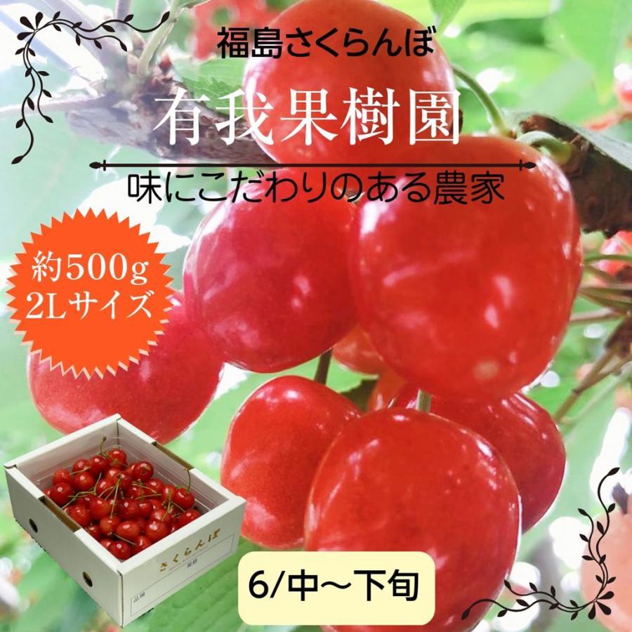 【有我果樹園】佐藤錦さくらんぼ 500g 2L 福島県須賀川市|sweetjuicyparadise