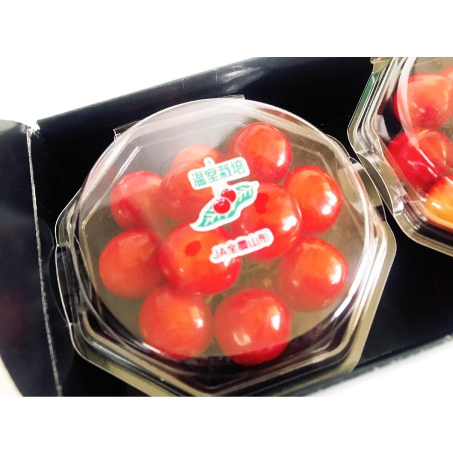 【一愛農園】佐藤錦 ダイヤパック100g×2 Lサイズ sweetjuicyparadise 02