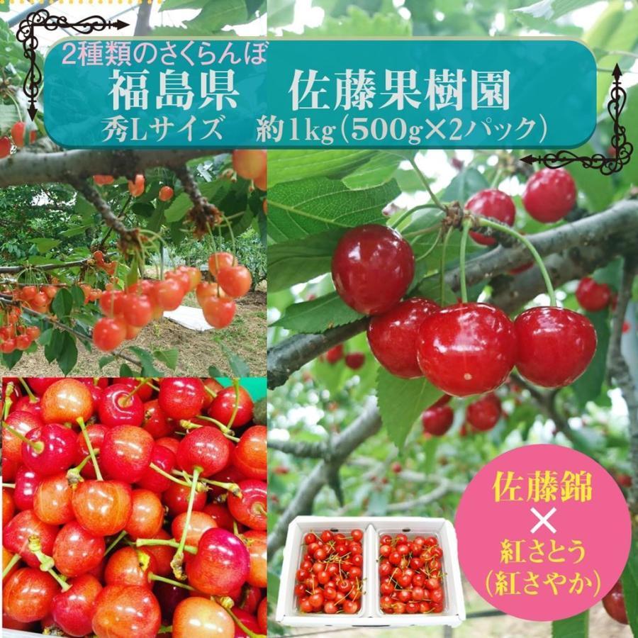 【佐藤果樹園】佐藤錦・紅さやか(紅さとう)さくらんぼ 約1kg 秀Lサイズ sweetjuicyparadise