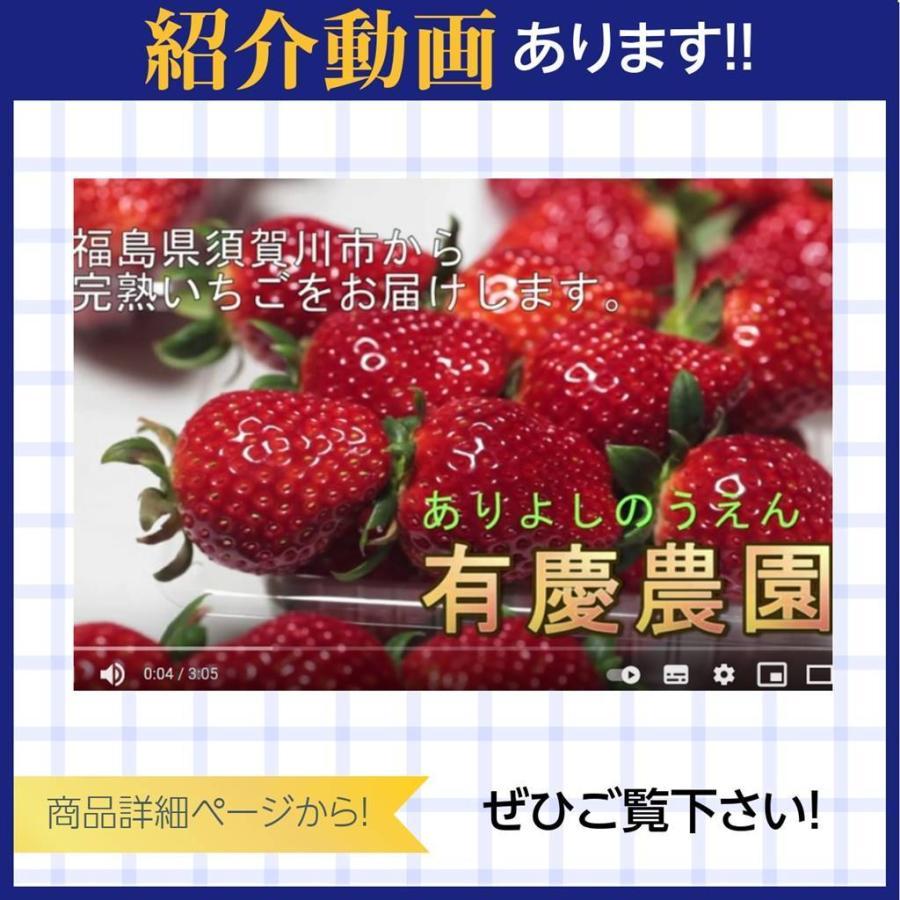 【有慶農園】 福島いちご 須賀川産 とちおとめ苺 約270gバラサイズ×4パック |sweetjuicyparadise|16
