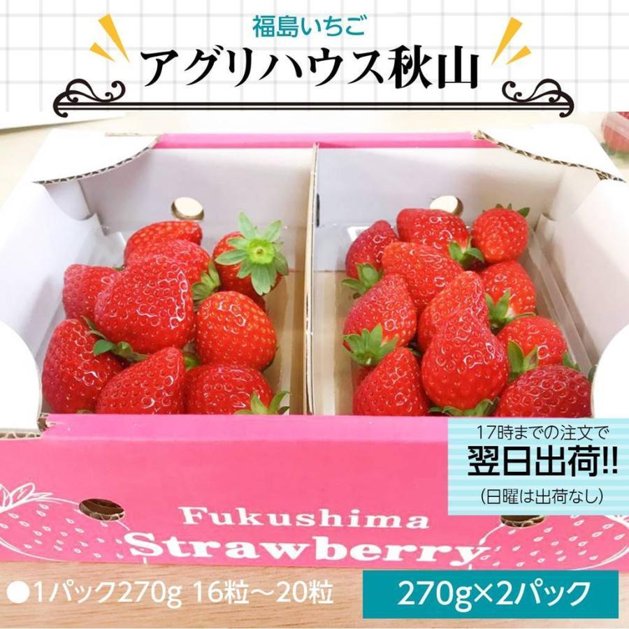 【アグリハウス秋山】福島いちご 須賀川産 とちおとめ苺 270g×2パック |sweetjuicyparadise