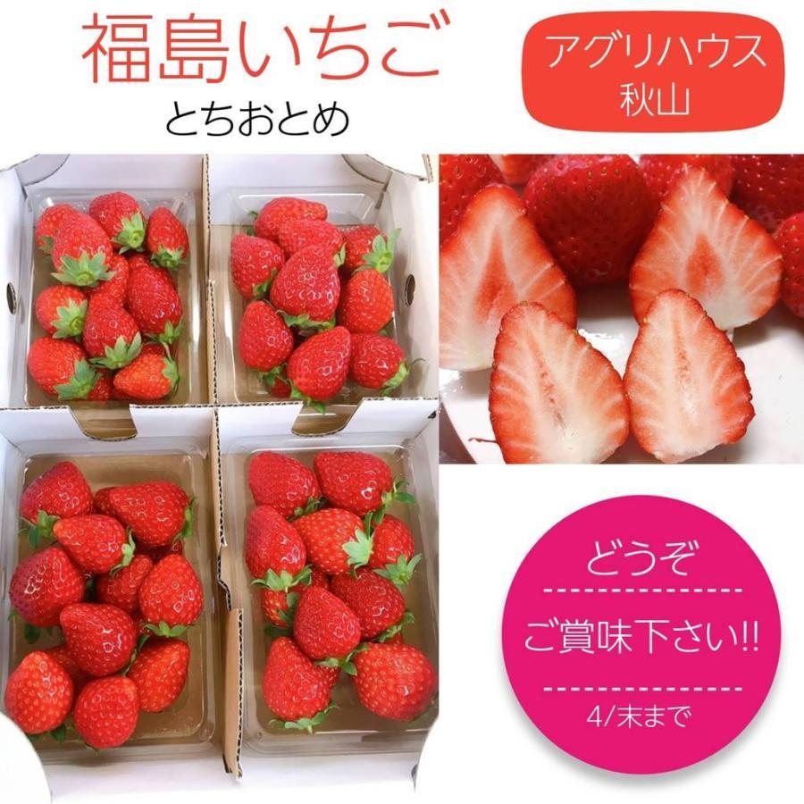 【アグリハウス秋山】福島いちご 須賀川産 とちおとめ苺 270g×4パック  sweetjuicyparadise 10
