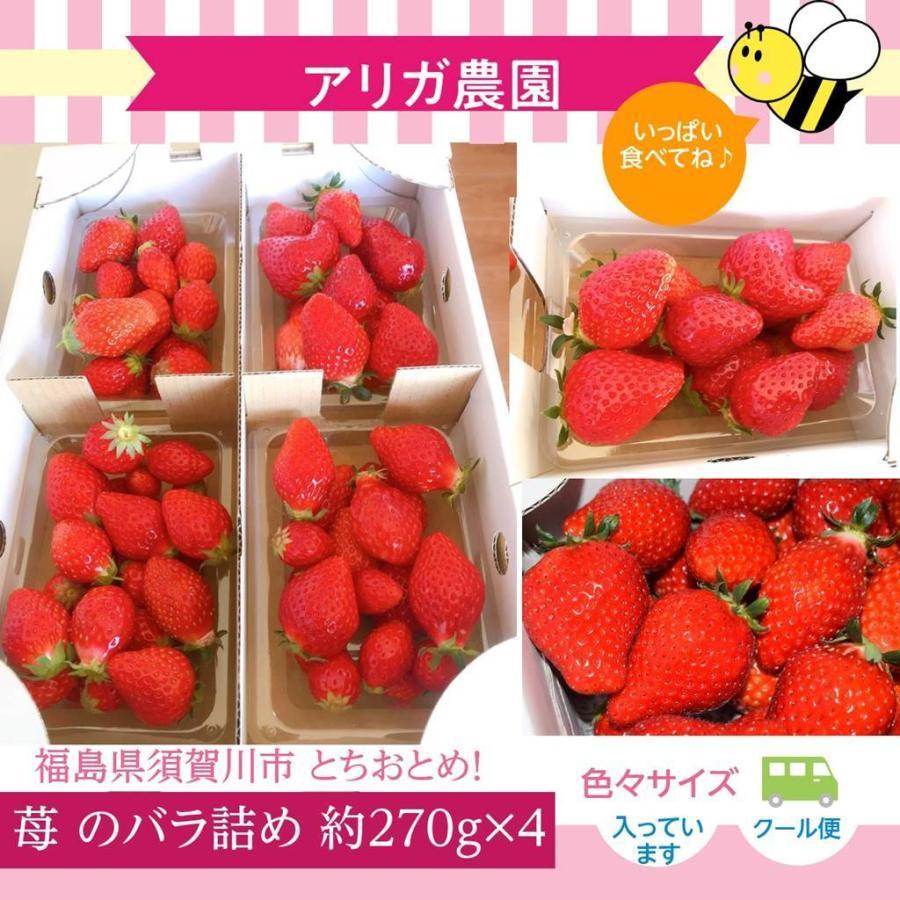 【アリガ農園】 福島いちご 須賀川市産 270g×4パック|sweetjuicyparadise