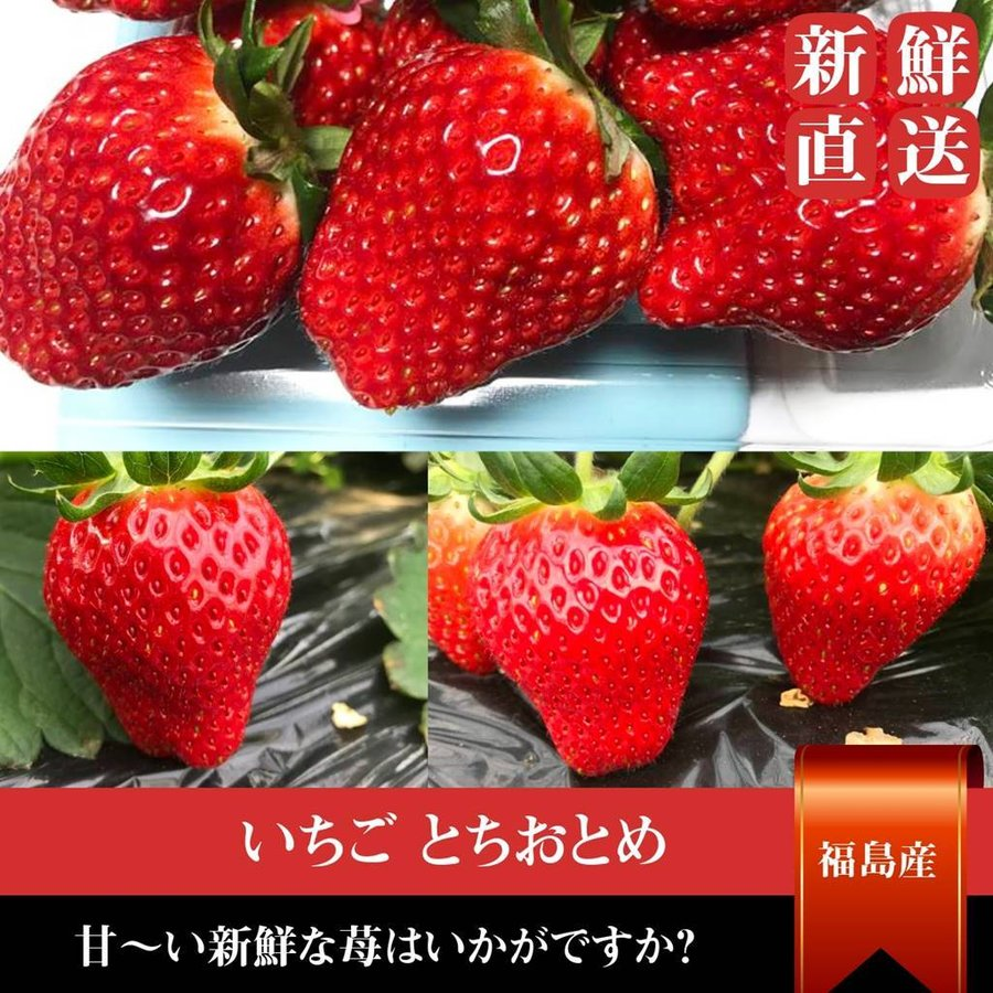 【アリガ農園】 福島いちご 須賀川市産 270g×4パック|sweetjuicyparadise|11