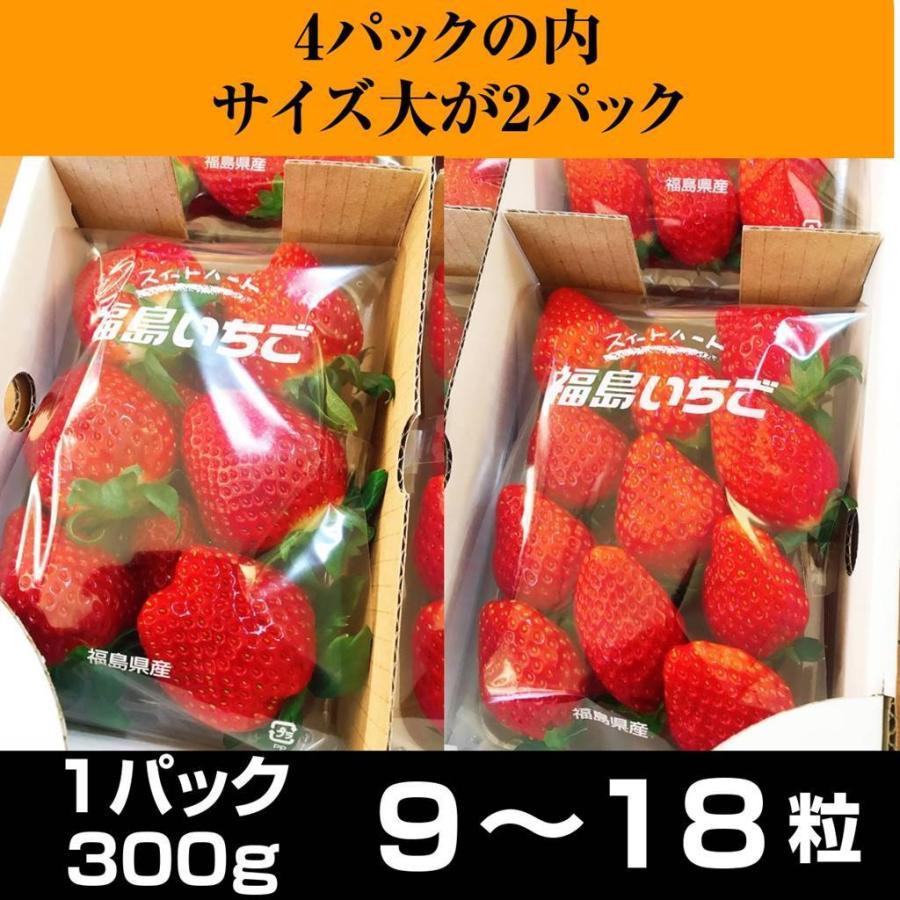 【アリガ農園】福島いちご 須賀川産 とちおとめ苺 300gサイズ大2パック 中2パック|sweetjuicyparadise|02