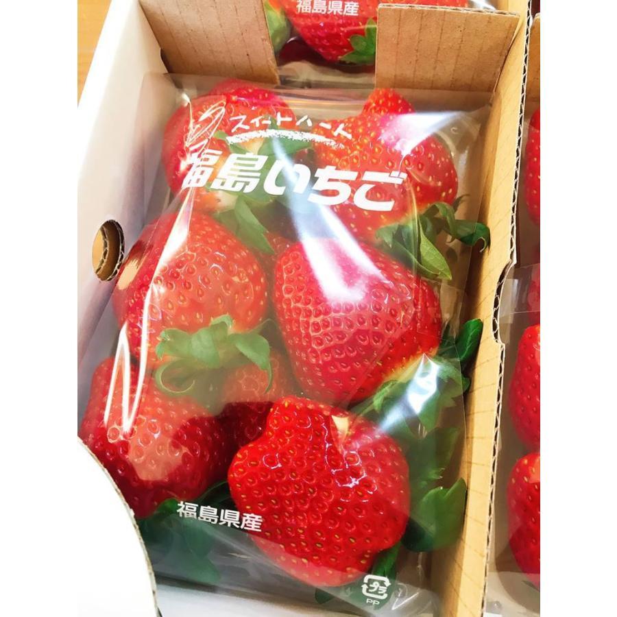 【アリガ農園】福島いちご 須賀川産 とちおとめ苺 300gサイズ大2パック 中2パック|sweetjuicyparadise|14