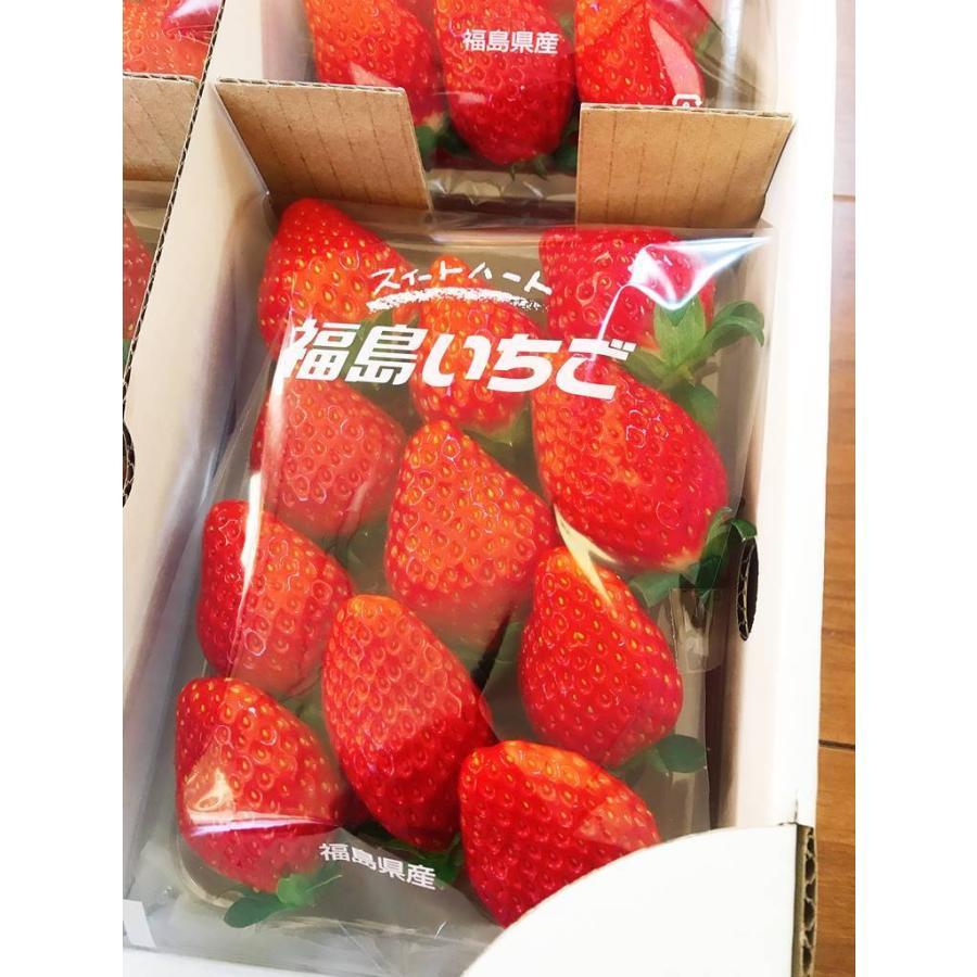 【アリガ農園】福島いちご 須賀川産 とちおとめ苺 300gサイズ大2パック 中2パック|sweetjuicyparadise|15