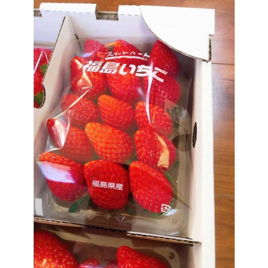 【アリガ農園】福島いちご 須賀川産 とちおとめ苺 300gサイズ大2パック 中2パック|sweetjuicyparadise|16