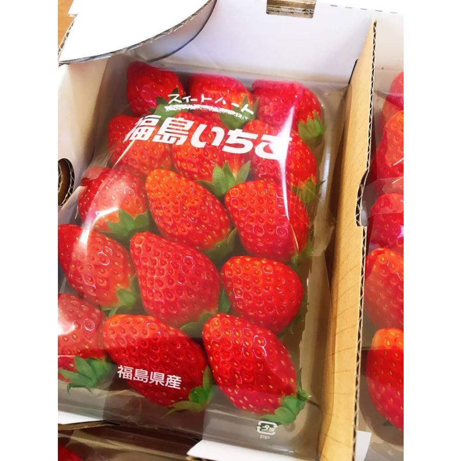 【アリガ農園】福島いちご 須賀川産 とちおとめ苺 300gサイズ大2パック 中2パック|sweetjuicyparadise|17