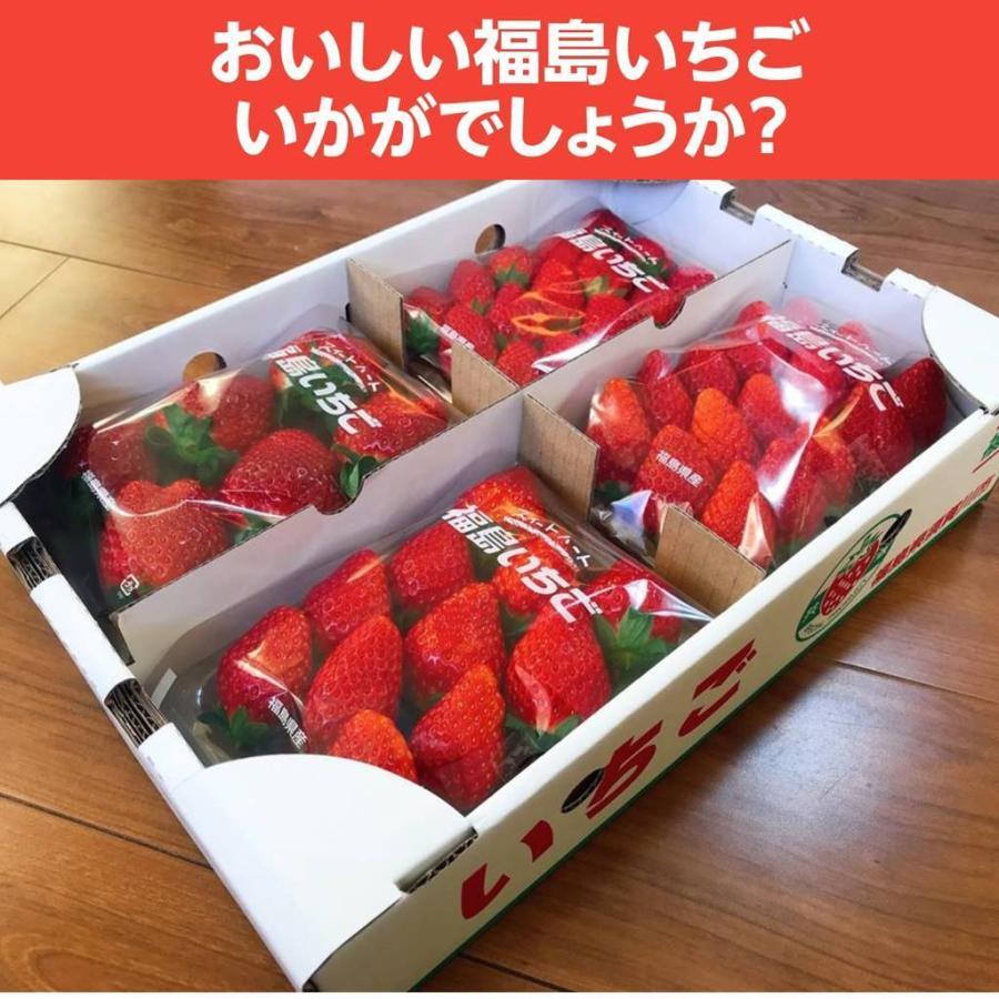 【アリガ農園】福島いちご 須賀川産 とちおとめ苺 300gサイズ大2パック 中2パック|sweetjuicyparadise|20