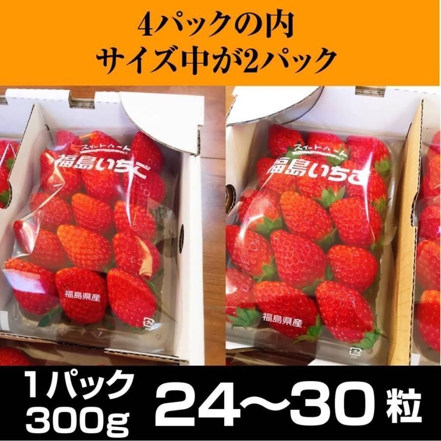 【アリガ農園】福島いちご 須賀川産 とちおとめ苺 300gサイズ大2パック 中2パック|sweetjuicyparadise|03