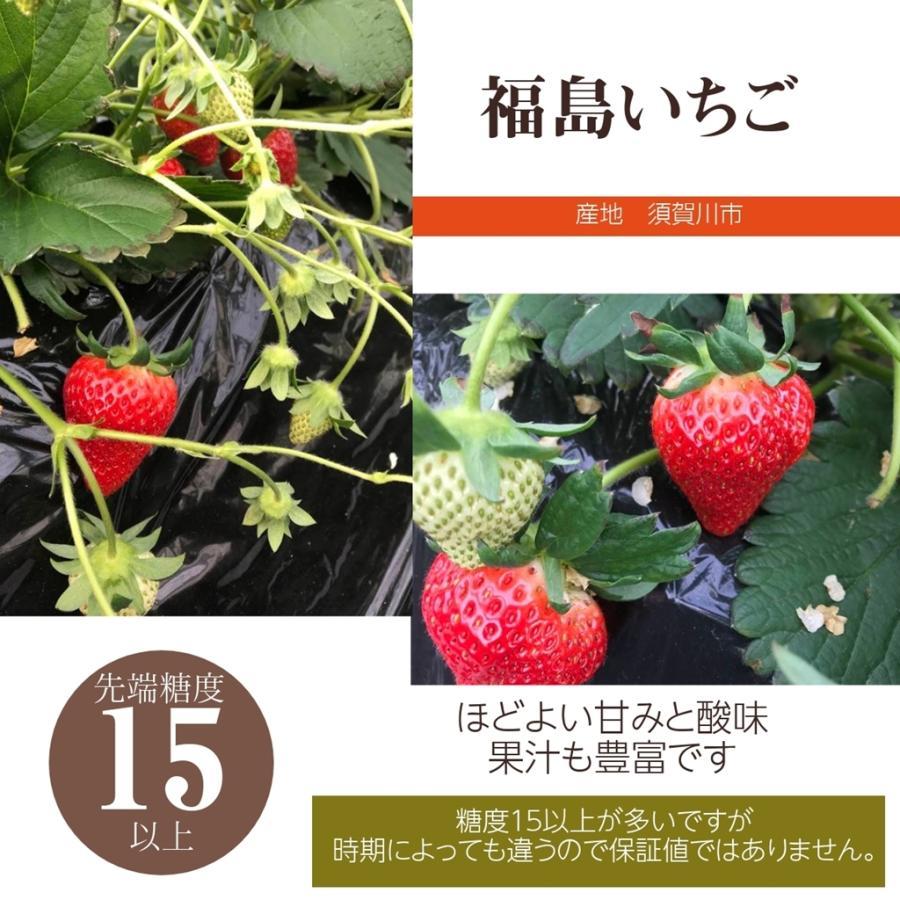【アリガ農園】福島いちご 須賀川産 とちおとめ苺 300gサイズ大2パック 中2パック|sweetjuicyparadise|06