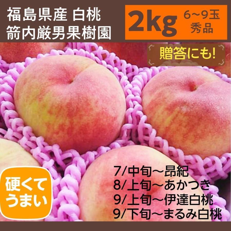 【箭内巌雄果樹園】桃 2kg 品種おまかせ 贈答・ギフトにも sweetjuicyparadise 02