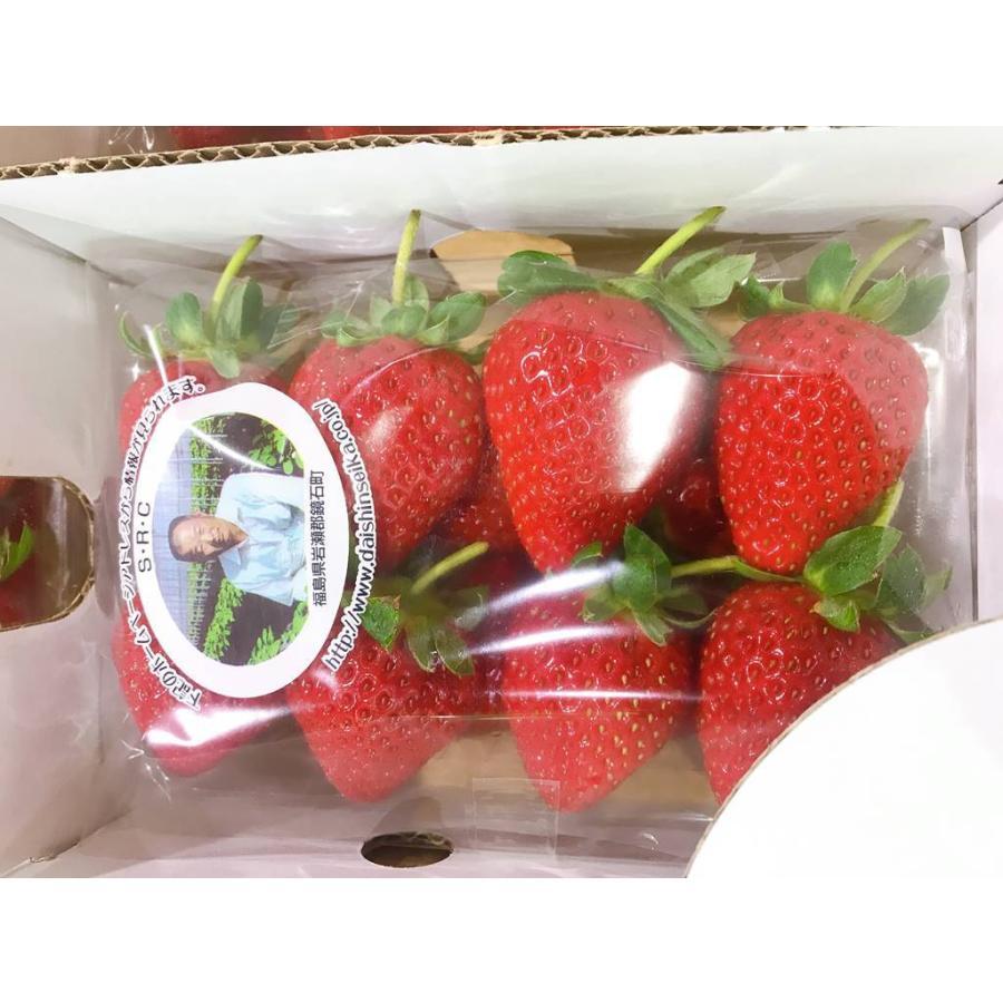 果物フルーツ詰め合わせ デトックスセットA|sweetjuicyparadise|04