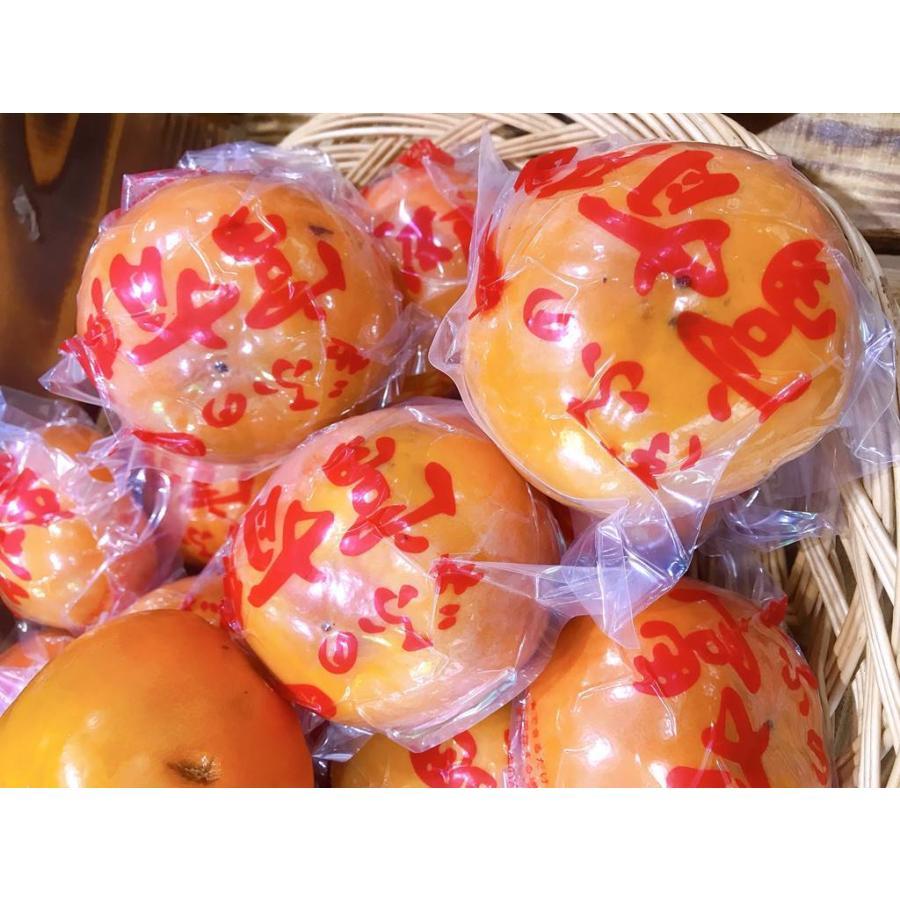 果物フルーツ詰め合わせ デトックスセットA|sweetjuicyparadise|05