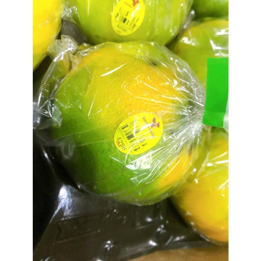 果物フルーツ詰め合わせ デトックスセットA|sweetjuicyparadise|10