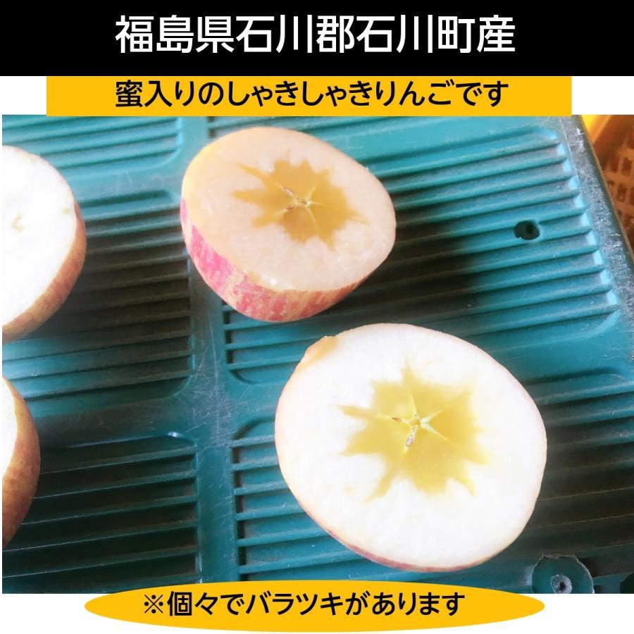 【訳あり】福島県 長田果樹園 りんご 小さいサイズ約5kg サンふじ|sweetjuicyparadise|02