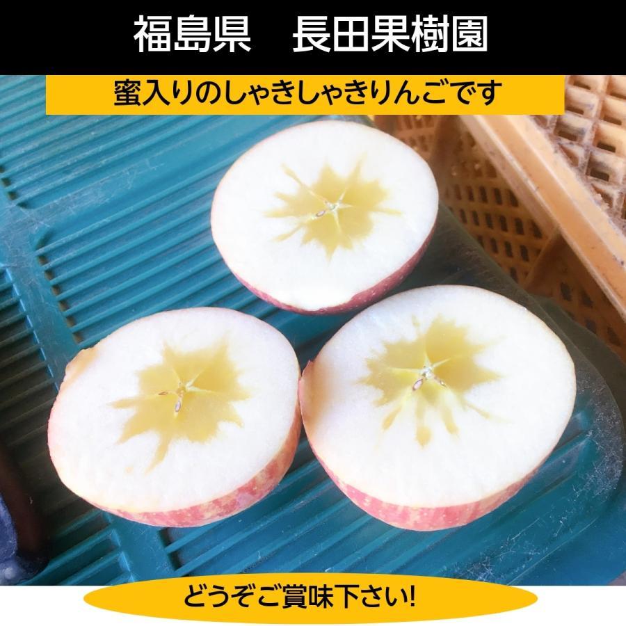 【訳あり】福島県 長田果樹園 りんご 小さいサイズ約5kg サンふじ|sweetjuicyparadise|12