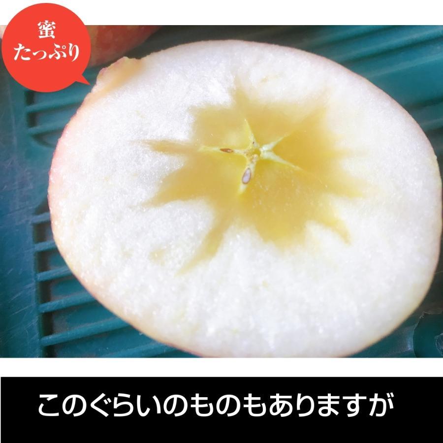 【訳あり】福島県 長田果樹園 りんご 小さいサイズ約5kg サンふじ|sweetjuicyparadise|03