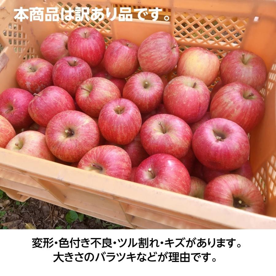 【訳あり】福島県 長田果樹園 りんご 小さいサイズ約5kg サンふじ|sweetjuicyparadise|09