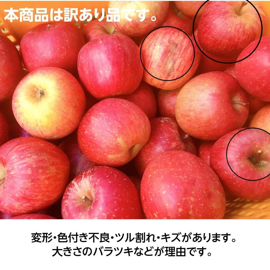【訳あり】福島県 長田果樹園 りんご 小さいサイズ約5kg サンふじ|sweetjuicyparadise|10