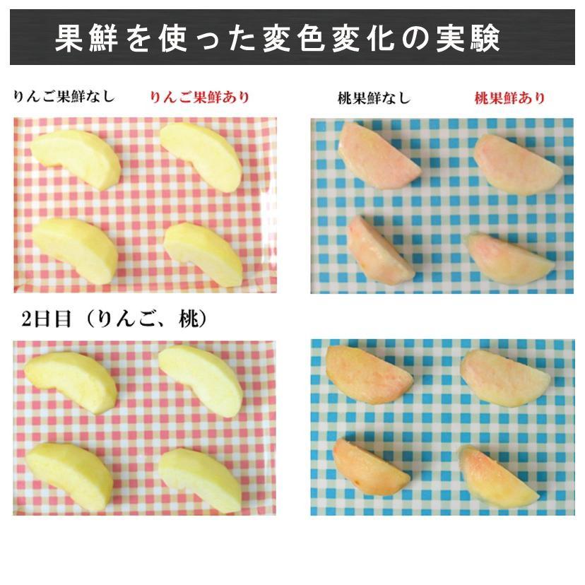 (PB)丸菱 変色防止剤 ニューカセン 果鮮 500g(常温)|sweetkitchen|07