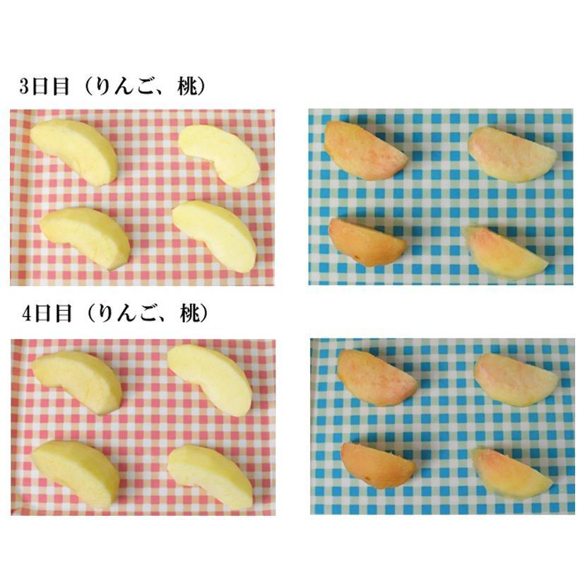 (PB)丸菱 変色防止剤 ニューカセン 果鮮 500g(常温)|sweetkitchen|09