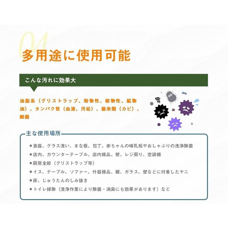 業務用 除菌 洗浄剤 ナインリボルバー レノグリーン 1kg(常温)|sweetkitchen|12