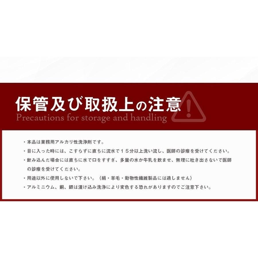業務用 除菌 洗浄剤 ナインリボルバー レノグリーン 1kg(常温)|sweetkitchen|15
