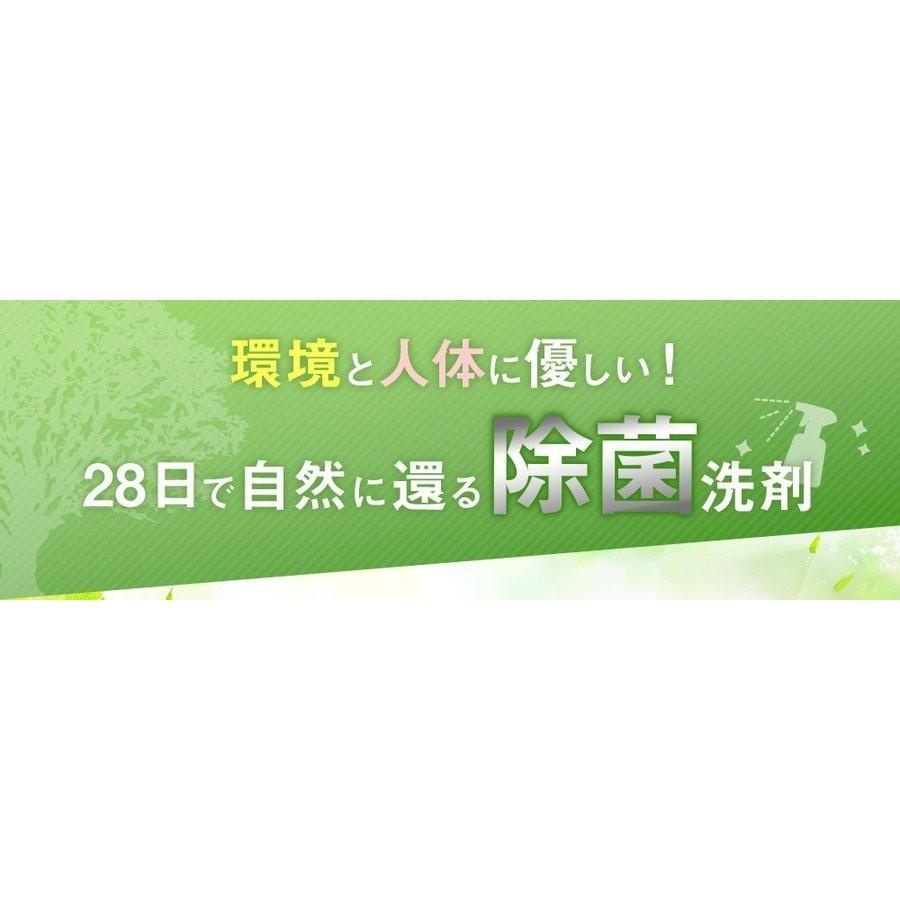 業務用 除菌 洗浄剤 ナインリボルバー レノグリーン 1kg(常温)|sweetkitchen|04