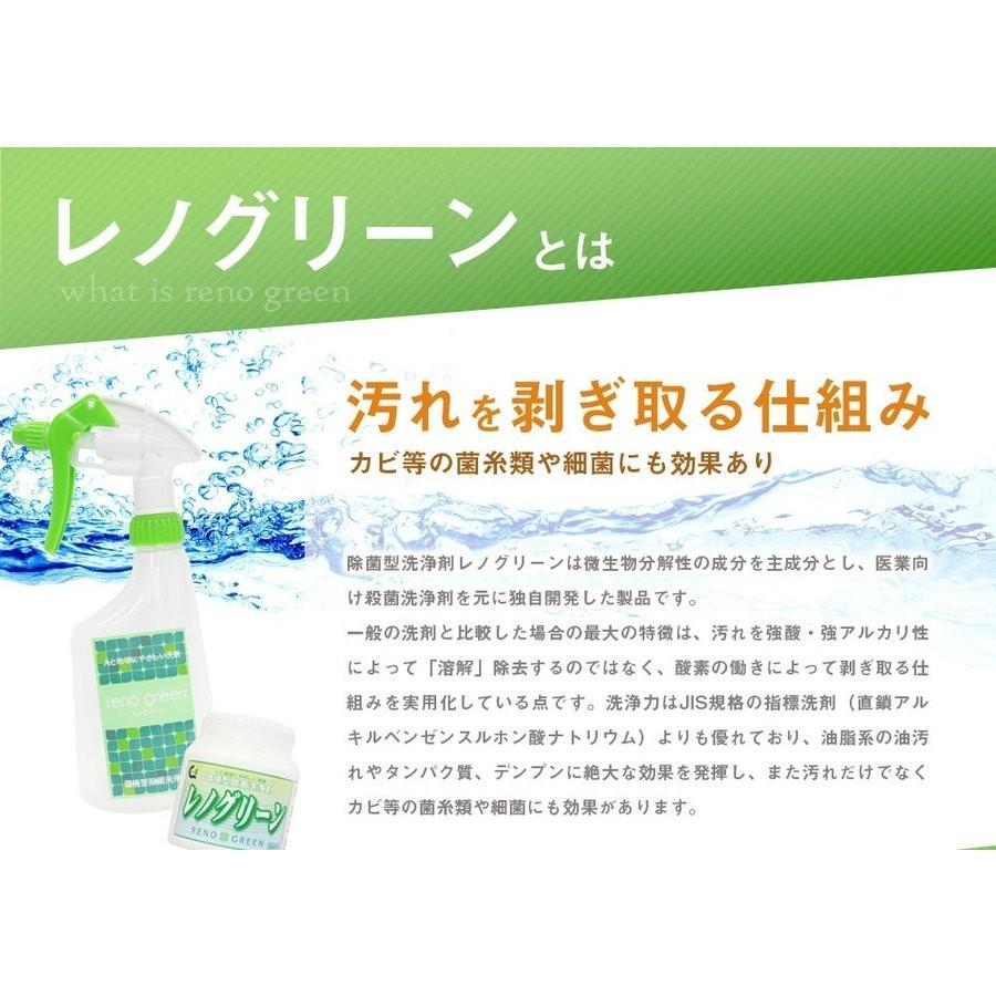 業務用 除菌 洗浄剤 ナインリボルバー レノグリーン 1kg(常温)|sweetkitchen|06