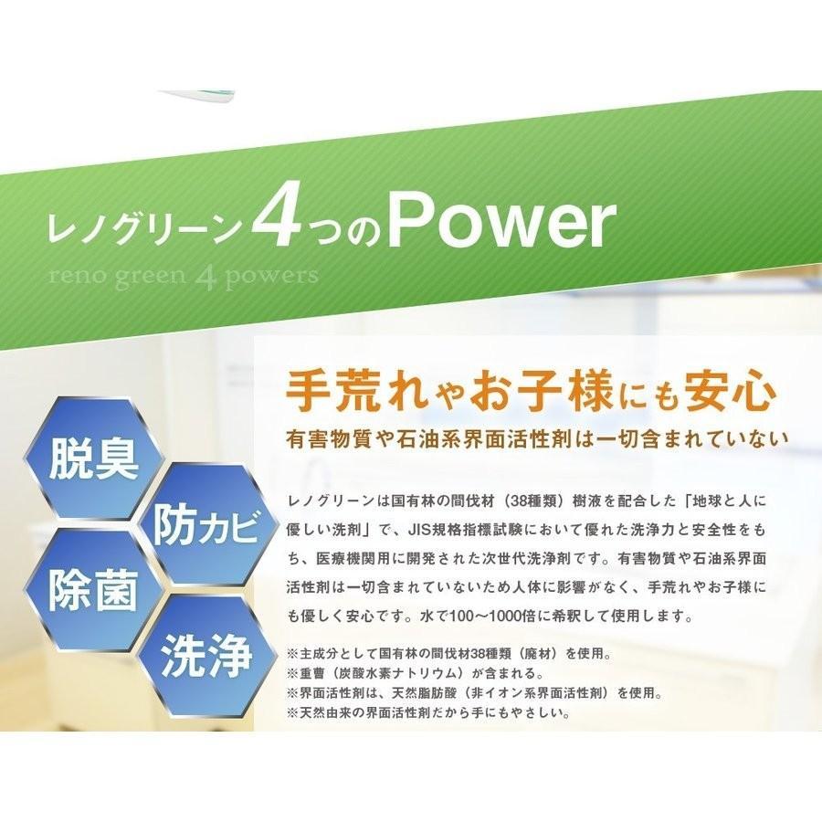 業務用 除菌 洗浄剤 ナインリボルバー レノグリーン 1kg(常温)|sweetkitchen|07