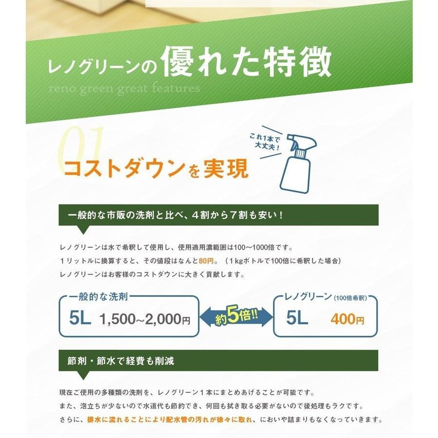 業務用 除菌 洗浄剤 ナインリボルバー レノグリーン 1kg(常温)|sweetkitchen|08