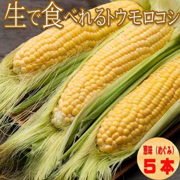 とうもろこし 特売 生で食べれるトウモロコシ セールSALE%OFF 北海道富良野産 恵味 めぐみ 2Lサイズ 5本入り 送料無料