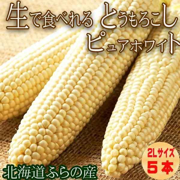 生で食べられるトウモロコシ 北海道富良野産 ピュアホワイト 5本入り 信託 7月発送 送料無料 ハウス栽培 お金を節約