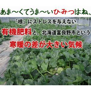 メロン 富良野メロン 北海道産 赤肉 秀品 2Lサイズ 2玉 約1.5kg以上 送料無料 sweetvegetable 12