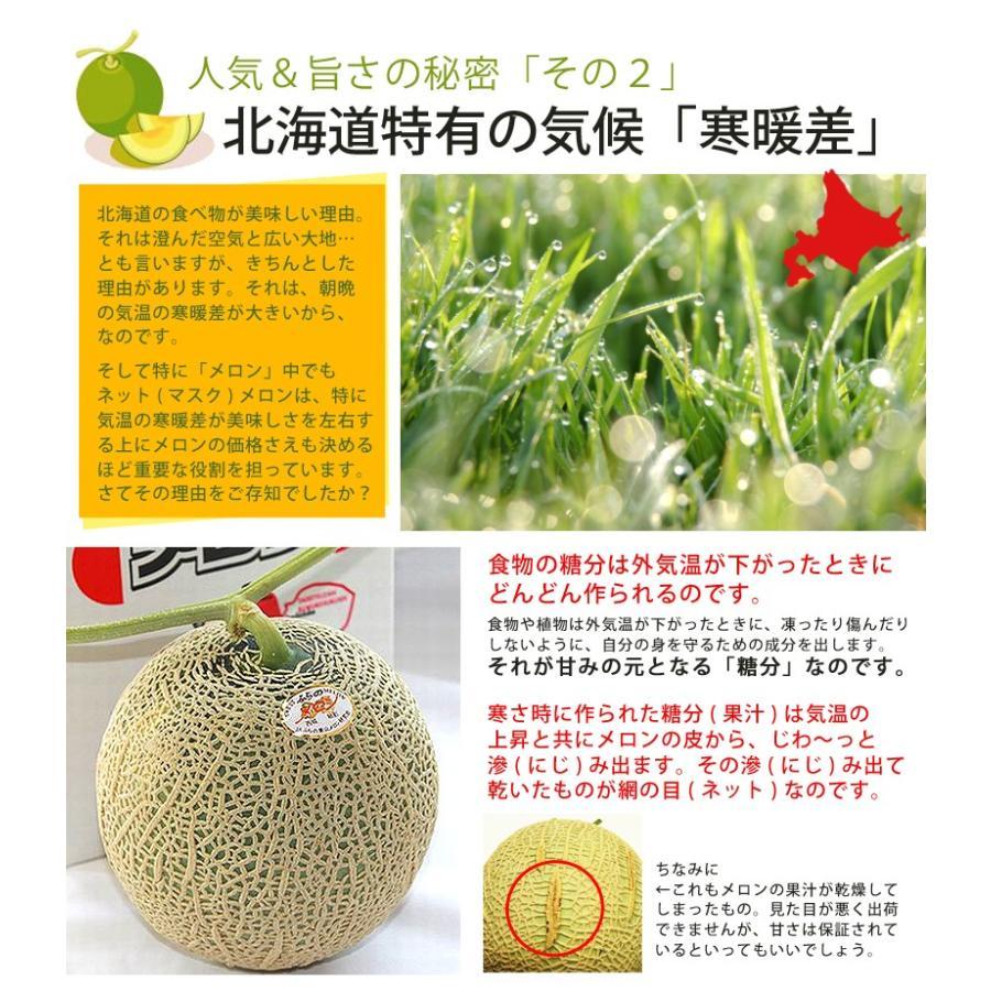メロン 富良野メロン 北海道産 赤肉 秀品 2Lサイズ 2玉 約1.5kg以上 送料無料 sweetvegetable 14