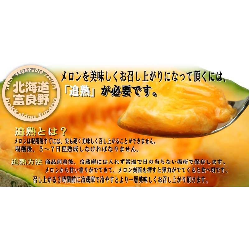 メロン 富良野メロン 北海道産 赤肉 秀品 2Lサイズ 2玉 約1.5kg以上 送料無料 sweetvegetable 05