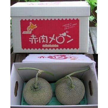 メロン 富良野メロン 北海道産 赤肉 秀品 2Lサイズ 2玉 約1.5kg以上 送料無料 sweetvegetable 08