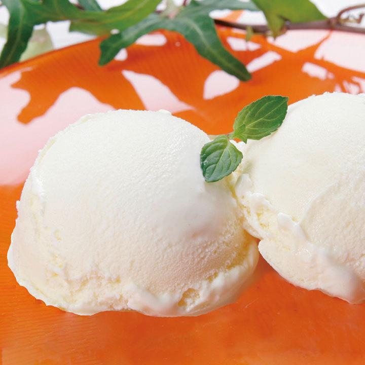 業務用 ニュージーランド産 バニラアイスクリーム 2L