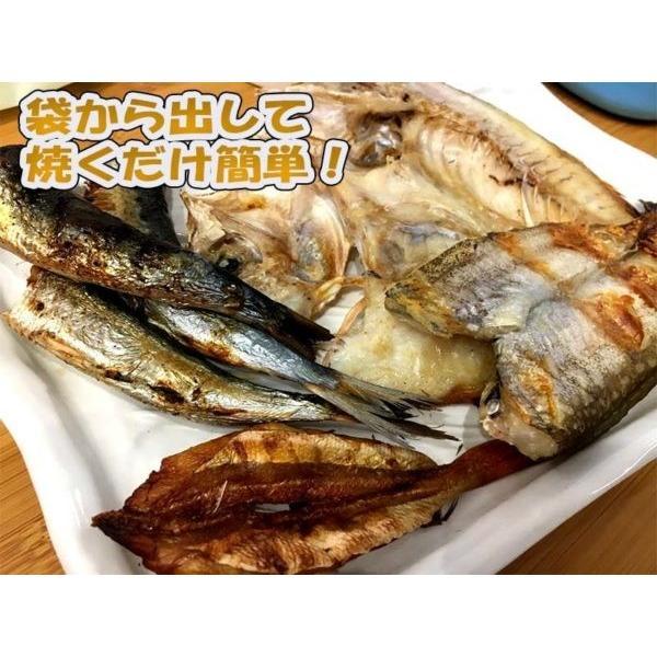地魚干物詰合せ 200g×10パック 日本海新潟寝屋漁港産限定使用 地味で小さい訳アリだけどワクワク美味しい干物セット ギフト 産地直送 条件付送料無料|syowamaru|02