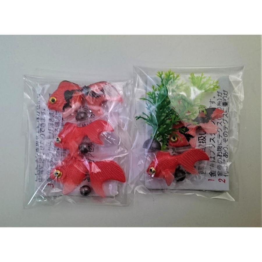 金魚 金魚(出目金)3匹セット+水草セット(金魚(出目金)小2匹・水草)が送料無料で1,100円(代引き不可)|syozan|02