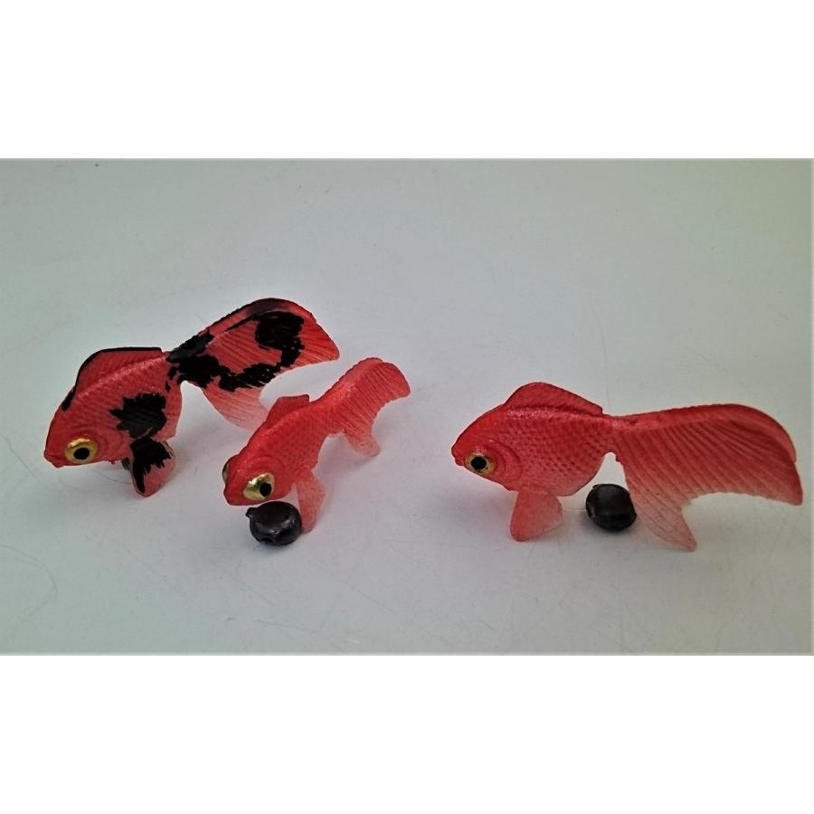 金魚 金魚(出目金)3匹セット+水草セット(金魚(出目金)小2匹・水草)が送料無料で1,100円(代引き不可)|syozan|04