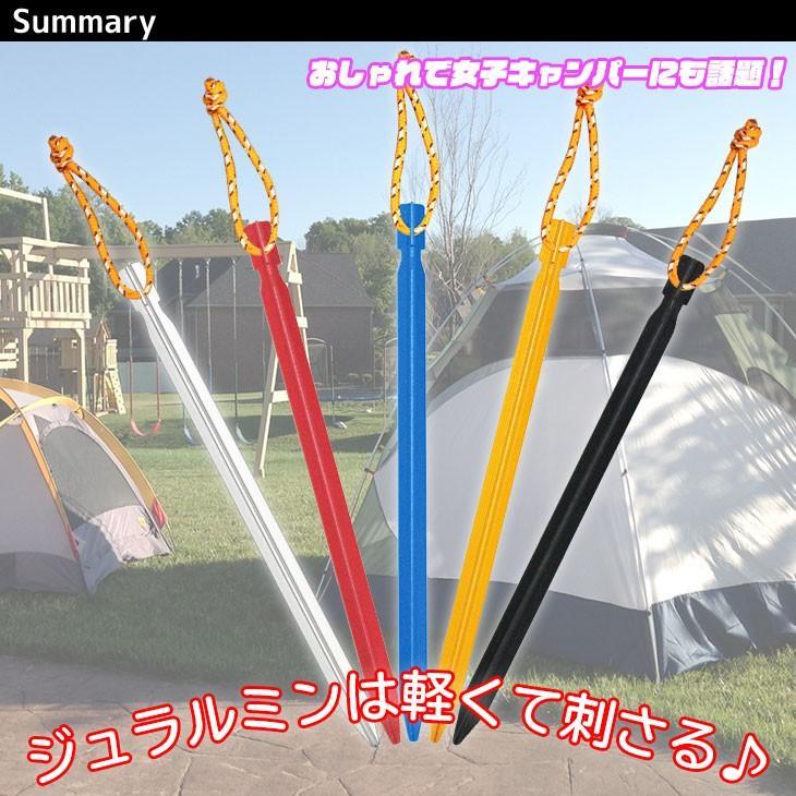 ジュラルミン ペグ テント タープ 固定具 BBQ キャンプ設営用具 20本セット 収納袋付き 23cmサイズ|systemstyle|02