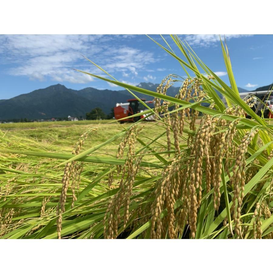 新米 雪室貯蔵米 令和3年産 南魚沼産コシヒカリ 塩沢産100%特別栽培米と慣行栽培米の5kg計10kgです。送料無料(本州) |syugyokunoippin|02