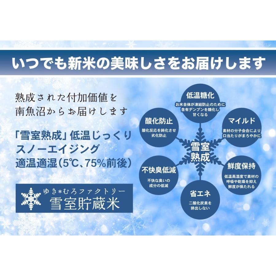新米 雪室貯蔵米 令和3年産 南魚沼産コシヒカリ 塩沢産100%特別栽培米と慣行栽培米の5kg計10kgです。送料無料(本州) |syugyokunoippin|05